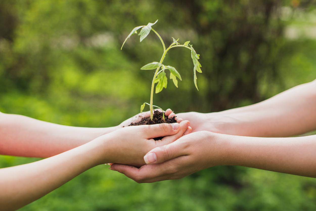 Le partage, Un Comportement Primitif